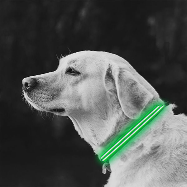 Large Green LED Lite Up Dog Collar inset 1